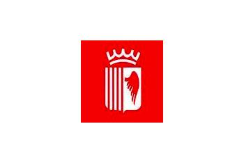Logo ajuntament Olot