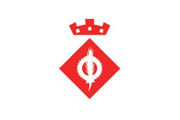 Logo ajuntament StPerpetua